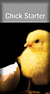 bag-chickstarter